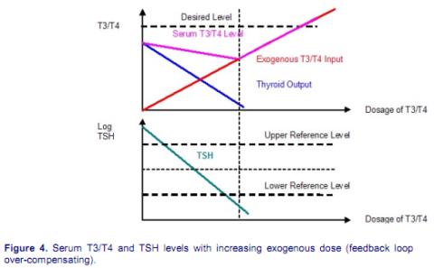 Warmingham-hypotesen, del 3 (Återkopplingen)